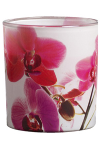 Geurglas 'Summer Days' Pink Orchids